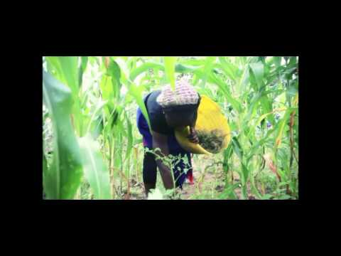 Awamaridi - Timi Phoenix video(2013)