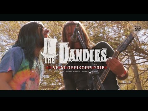 The Dandies - Lonely boy (live at Oppikoppi 2016)