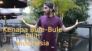 Download Video Kenapa bule-bule pilih Indonesia? MP3 3GP MP4