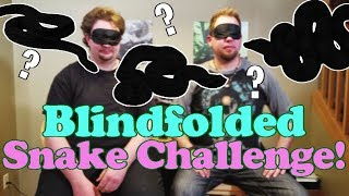 Identifying Snakes While Blindfolded! by Snake Discovery