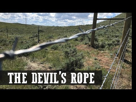 Barbed Wire Fencing - The Devil's Rope