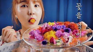 꽃을 먹어요(feat.벌집꿀) ASMR Flowers Eating Sounds 식용꽃 리뷰