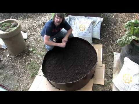By Using These Organic Raised Bed Gardening Tip, grow A Safer Gardens