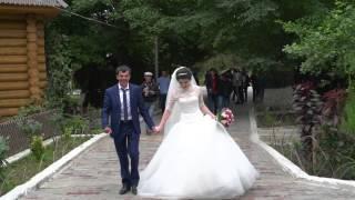 Veronica medina wedding