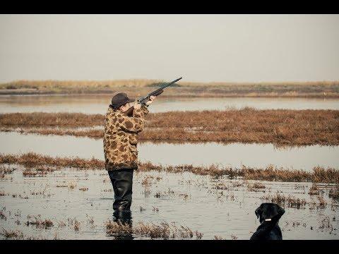 California Duck Hunting | Marshview Duck Club