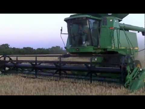 wheat - Ever wondered what wheat harvest on a family farm really looks like? This video gives you an inside look at everything that goes into harvesting wheat. Filme...
