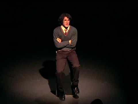 hmm... has anybody here NOT seen any StarKid videos?