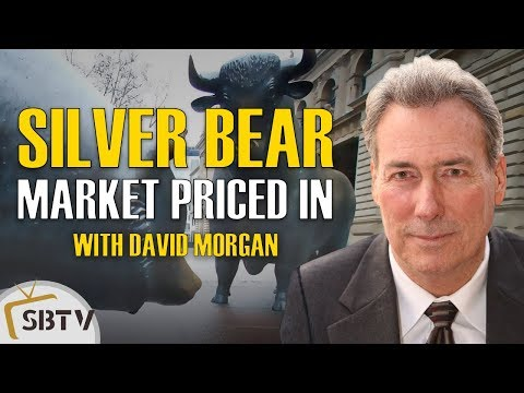 David Morgan - Silver Bear Market Priced In, Grave Mistake To Not Have Silver Position