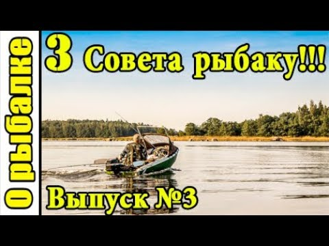 Три лайфхака на летнюю рыбалкусоветы рыболову