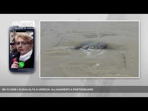 08/11/2019 | ACQUA ALTA A VENEZIA, ALLAGAMENTI A PORTOGRUARO