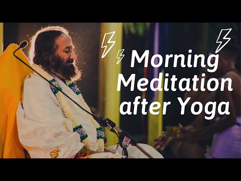 Morning Yoga Part 17 Meditation by Sri Sri Ravi Shankar