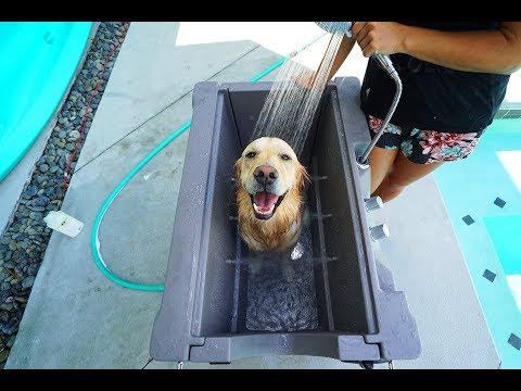 PUPPY LOVES HIS NEW CUSTOM DOG BATH - Super Cooper Sunday #157 (видео)