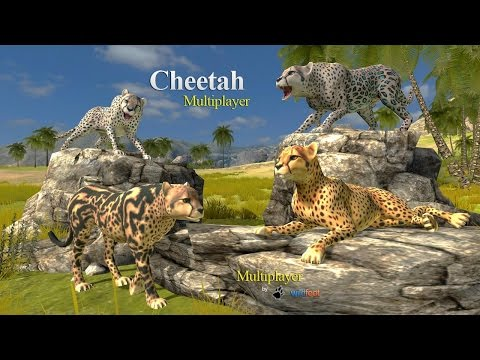 🐆🐾👍Cheetah Multiplayer Simulator -By Wild Foot Games Adventure - iTunes/Android