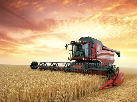 Täter oder Wohltäter? - Die Macht der Agrar-Riesen