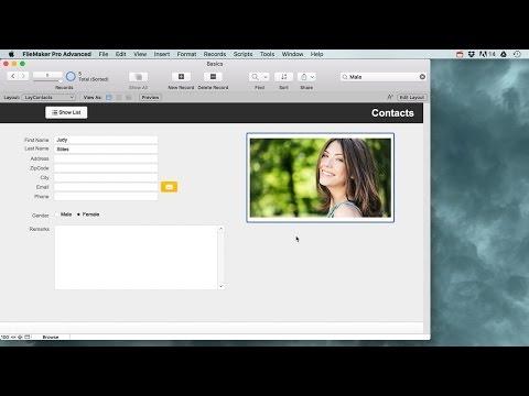 Filemaker Pro Basics for beginners