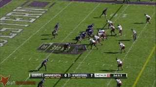 Ra'Shede Hageman vs Northwestern (2013)