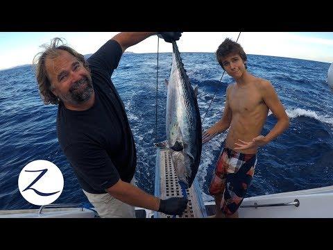 Video DEEP SEA FISHING CATCH CLEAN COOK on a CATAMARAN! [Sailing Zatara Ep 62] download in MP3, 3GP, MP4, WEBM, AVI, FLV January 2017