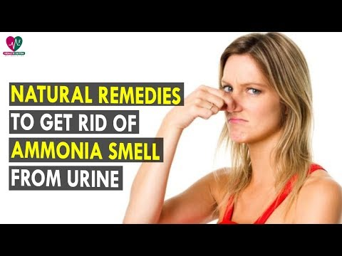 Natural Remedies To Get Rid Of Ammonia Smell From Urine || Health Sutra - Best Health Tips