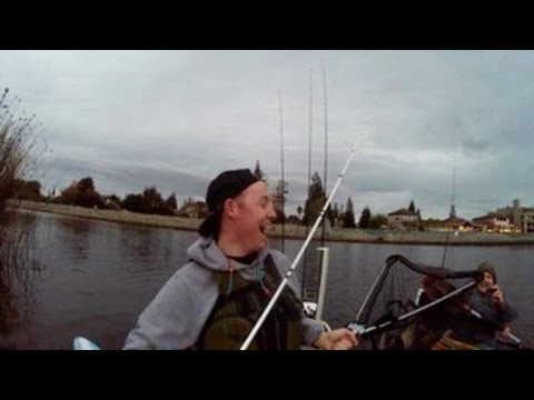 Fishing for Delta Striper and got a HUGE SURPRISE!
