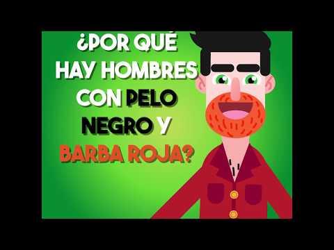 ¿Por qué hay hombres con pelo negro y barba roja?
