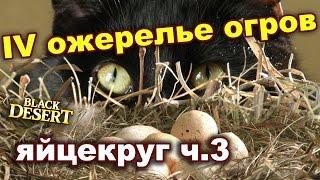 Black Desert (RU) - Заточка 4 огра в BDO | Яйца | Гильдия IddQd