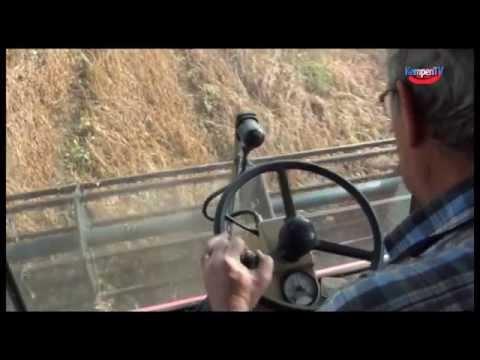Oktober 2014 Soja oogst Hoogeloon