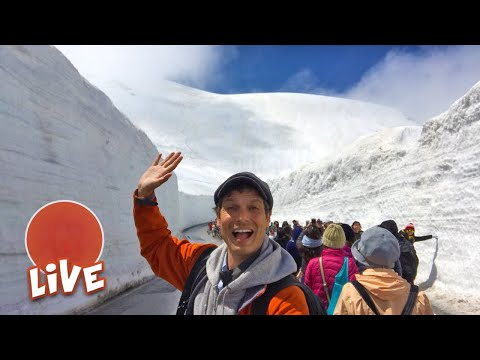 Massive Snow Wall Walk Adventure