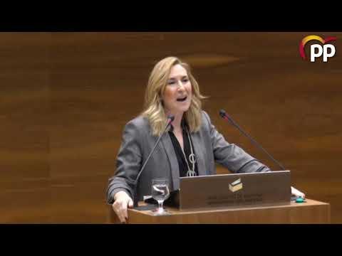 """Ana Beltrán y el """"papelón"""" de los socialistas con los símbolos de Navarra"""