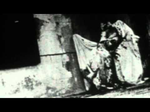 Immundus - Dead Bodies