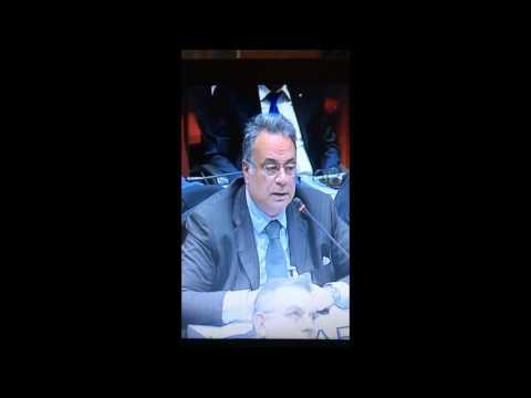 DECRETO SICUREZZA URBANA: AUDIZIONE ALLE COMMISSIONI I E II DELLA CAMERA DEI DEPUTATI 1/2