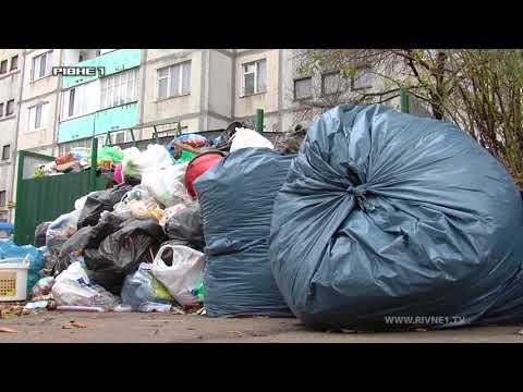 Коли у рівненських дворах закінчиться сміттєвий хардкор? [ВІДЕО]
