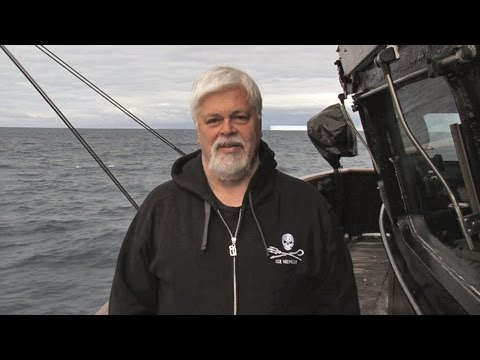 Paul Watson Thanks Sea Shepherd Supporters