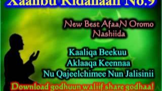 Xaalibu Ridallah No  9 Kaaliqa beekuu aklaaqa keennaa Nu qajeelchimee nun jalisinii