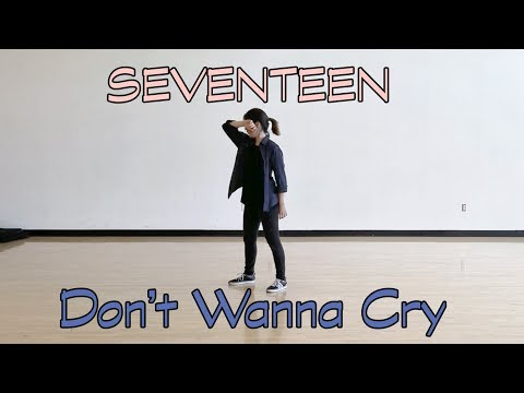SEVENTEEN (세븐틴) - 울고 싶지 않아 (Don't Wanna Cry) Dance Cover