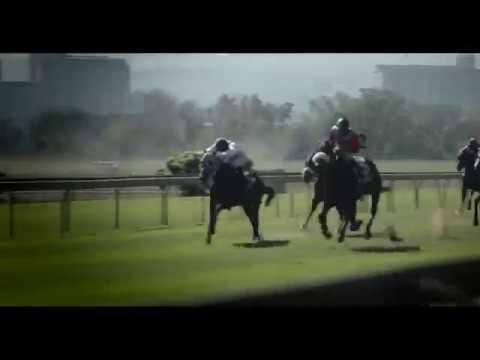 Tsogo Sun Sprint Scottsville Racecourse