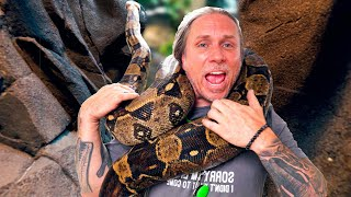 GIANT BOA MOVED INTO MY REPTILE ZOO!! 1 DAY UNTIL OPEN!! | BRIAN BARCZYK by Brian Barczyk