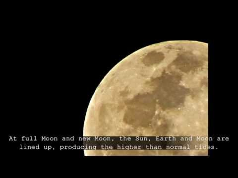 The Biggest Moon (Super Moon 2010) (VIDEO)