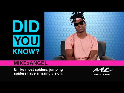 MikexAngel Hates Hot Dogs: Did You Know?