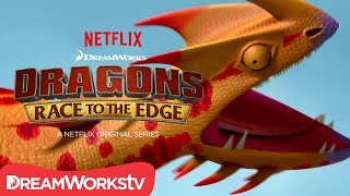 Video New Dragon Revealed: Singetail | DRAGONS: RACE TO THE EDGE MP3, 3GP, MP4, WEBM, AVI, FLV Agustus 2018