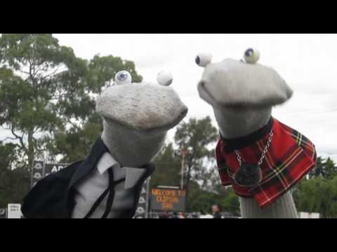 Clipsal 500 - Scottish Falsetto Socks in Adelaide