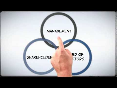 Corp 101: The Basics of Corporate Structure