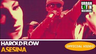 HAROLD FLOW  ASESINA  OFFICIAL VIDEO REGGAETON 2018  CUBATON 2018