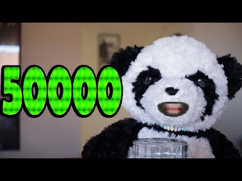 Pandrew Counts to 50,000! Very Long Video with Numbers (100000 / 2)