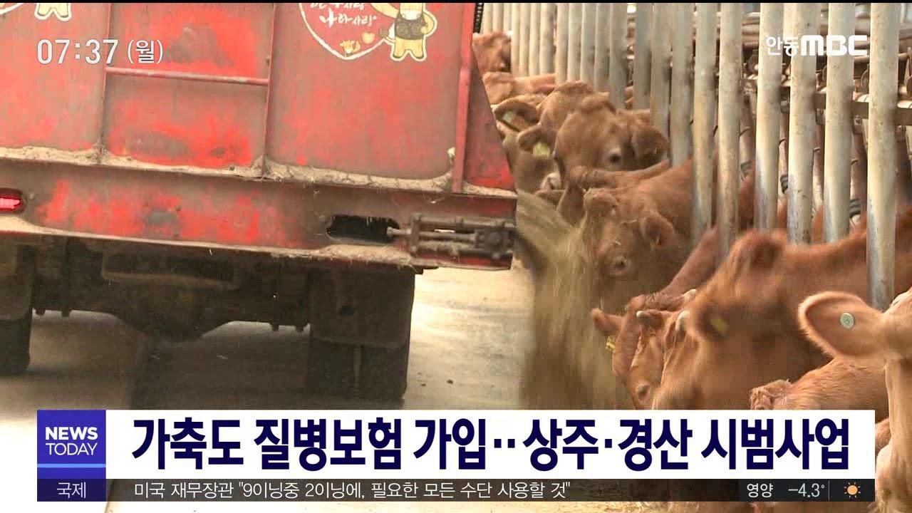 '가축질병치료보험' 상주, 경산 시범 실시