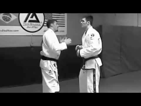 80 Techniques Helio Gracie Tribute  Migliarese Bros  BJJ Brazilian Jiu Jitu Self Defense