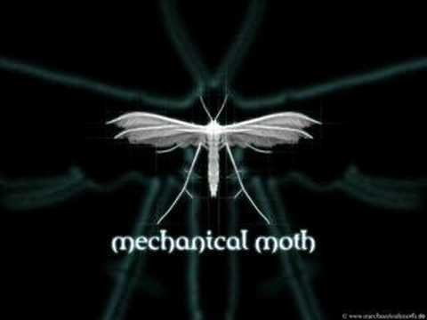 Tekst piosenki Mechanical Moth - A Haze in the Shadow po polsku