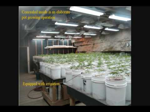 Huge Pot Cave Bust TON OF POT MUST SEE