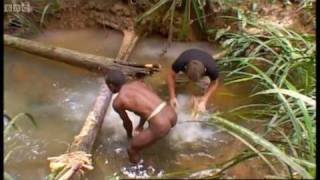Tribe: visiting a tribe famed for cannibalism - Explore - BBC
