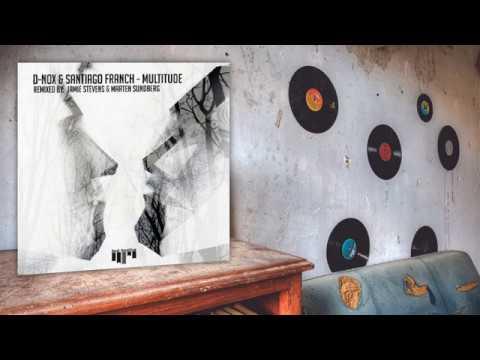 D-Nox, Santiago Franch - Multitude (Jamie Stevens Remix)