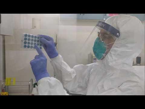 O uso de plasma no combate a Covid-19